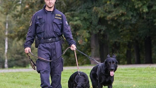 HERO. Policejní pes, který dopadl podezřelého z poškození cizího majetku.