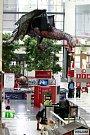 Draci v ostravském obchodním centru Avion Shopping Park.