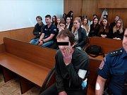 Muž u soudu prohlásil, že si na samotný útok nepamatuje, prý měl takzvanou mlhu.
