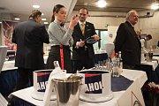 Devatenáctý ročník AHOL Cupu se konal v Multifunkční aule Gong.