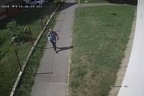 Foto muže, který v srpnu odcizil dámské horské kolo