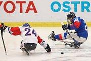 Mistrovství světa v para hokeji 2019, Korea - Česká republika (zápas o 3. místo), 4. května 2019 v Ostravě. Na snímku (zleva) Safranek Zdenek (CZE), Jang Dong Shin (KOR).