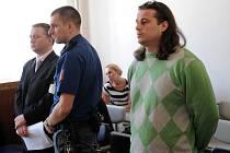 Léky podle obžaloby sehnal lékař Antonín Strapina (vlevo). Medikamenty prodával Vlastimil Hýža.