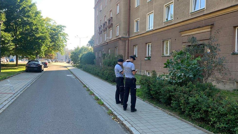 Strážníci obcházející domy v Porubě.
