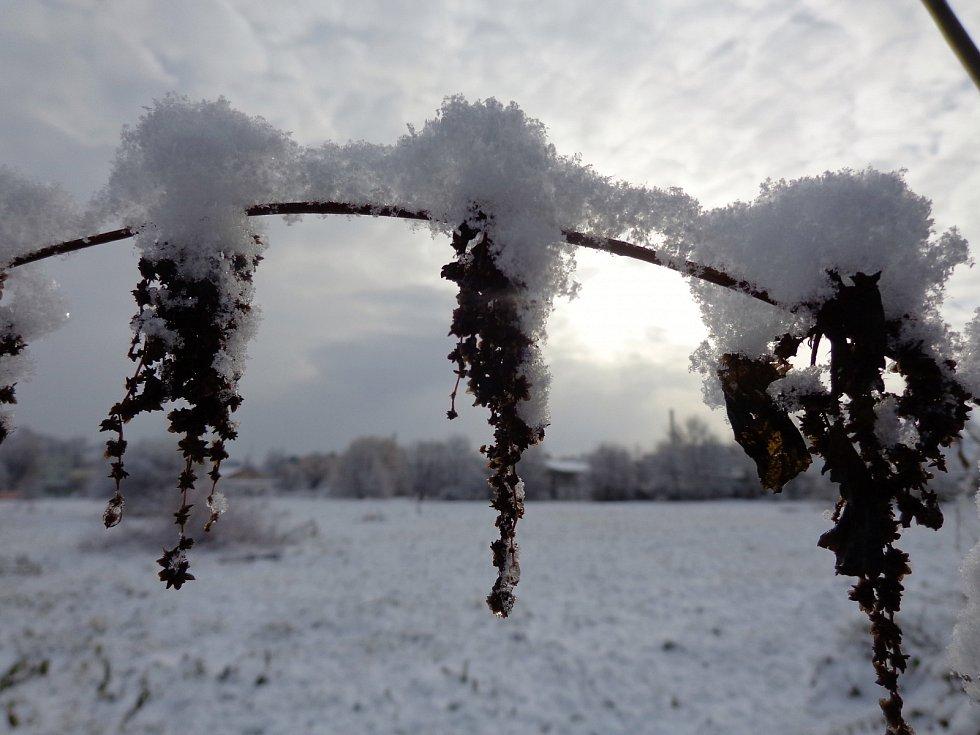 Zasněžené scenérie a detaily v Opavě-Jaktaři.