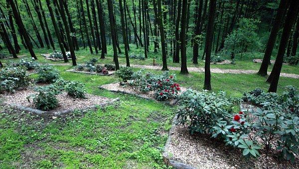 Zoo vOstravě se může chlubit největší koncentrací rododendronů vcelé České, ale iSlovenské republice.