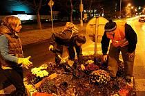 Chryzantémy, macešky a další květiny zdobí okolí Porubské ulice v Porubě.