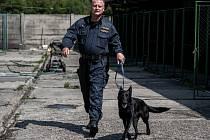 """Na svou """"práci"""" se Runda s majorem Kozákem připravuje druhým rokem. Předtím byla vychovávána v policejní chovatelské stanici v Domažlicích."""