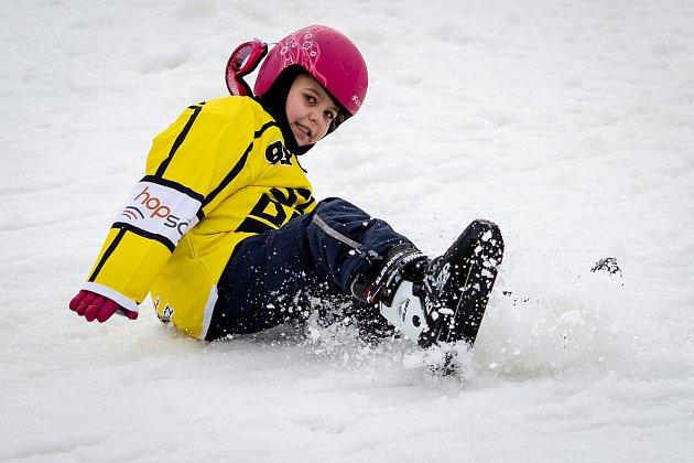 Sled Dogs skates (sněžné brusle) ve Skalka family park, 2.února 2020vOstravě.