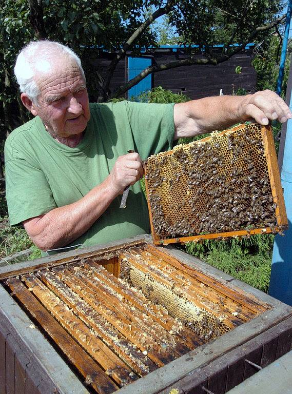 Včelař Ivan Korba