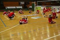 Rozcvička před středečním zápasem 3. kola Challenge Cupu na maďarské palubovce byla důkladná, přesto v něm volejbalisté DHL Ostrava neuspěli. V Kaposváru domácí Kométě podlehli za hodinu hladce 0:3, když celkem uhráli pouze 44 bodů.