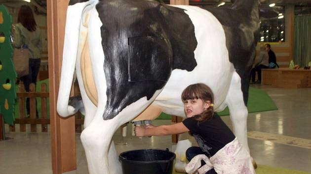 Odkaz na zemědělce je zatím pouze v průmyslově a vědecky orientovaných expozicích Dolní oblasti Vítkovice v podobě věrného modelu krávy-dojnice ve Velkém světě techniky.
