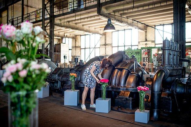 Výstava Florea ve strojovně Dolu Michal vMichálkovicích, 31.května 2019vOstravě.