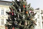 Opavský vánoční strom.