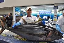 Porcování tuňáka a otevírání ústřic v Makru v Hrabové.