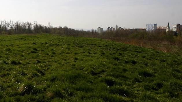 HALDA HRABŮVKA má plochu bezmála sto hektarů a v nejvyšším bodě je vysoká 27 metrů. Její vznik se datuje rokem 1890.