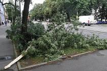 Ilustrační snímek ze čtvrtečního rána. Bouřka doprovázená silným větrem, deštěm i krupobitím způsobila v noci na čtvrtek velké škody.