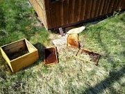 Medvěd poničil v minulých dnech úl v Kozlovicích.