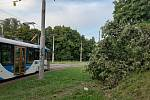 Auto v Ostravě skončilo v koruně stromu. Pak dopadlo k tramvajovým kolejím. Snímek z místa nehody.