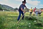 Sečení trávy. Ilustrační foto.