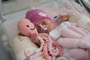 Na dětské JIP (jednotka intenzivní péče) v nemocnici FNO (Fakutlní Nemocnice Ostrava Poruba) mají v inkubátorech novorozená děti háčkované chobotničky.