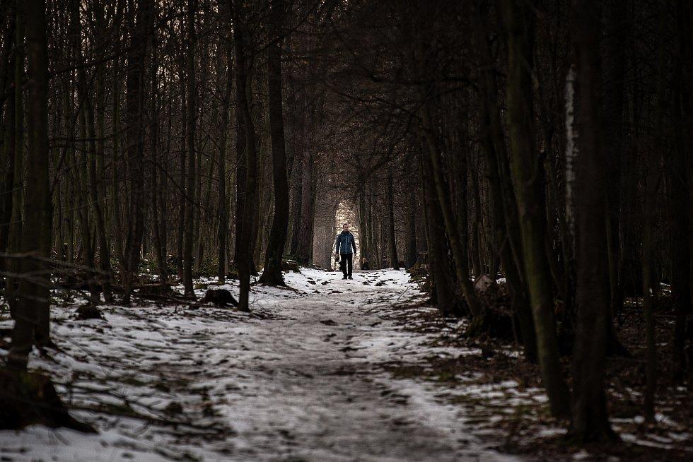 Jarní počasí v lesoparku Bělský les, 24. února 2021 v Ostravě.