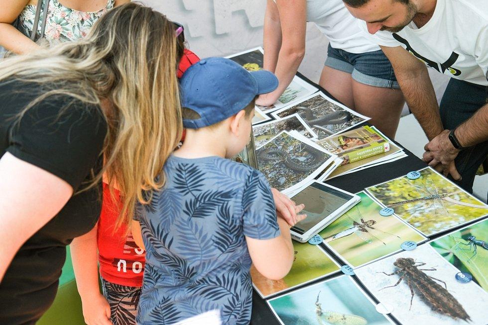 Přírodověda v praxi. Studenti v Ostravě přibližují vědu dětem i dospělým.