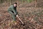 Kup plátěnku, zasaď strom! Adam Demo (na snímku) vymyslel projekt, který vrací stromy do moravskoslezských lesů.