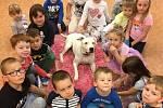 Markéta Skopalová se se svými dvěma americkými stafordširskými teriéry věnuje skupinové canisterapii s dětmi z mateřské školy Dvorní v Porubě.