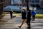 Nedělní odpoledne v Komenského sadech. Dle nařízení vlády ČR je od 3. března 2021 zakázán volný pohyb osob mimo okres. 7. března 2021 v Ostravě.