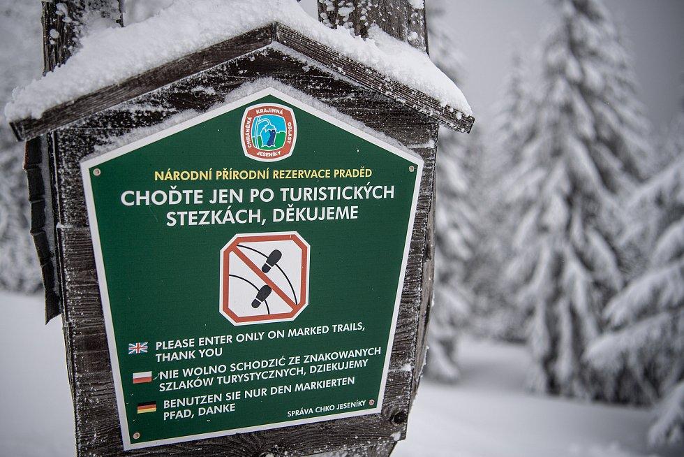 Cedule označuje národní přírodní rezervaci Praděd (NPR Praděd), 30. ledna 2021 na Pradědu.