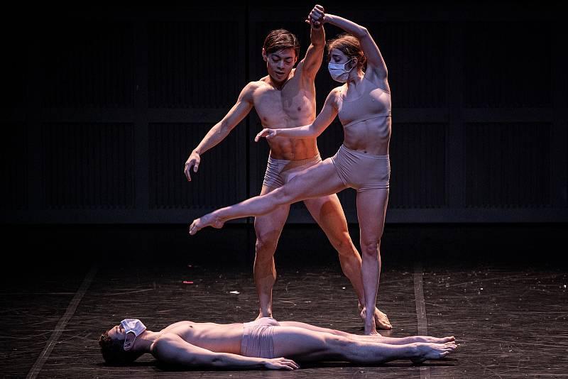 Členové baletního souboru NDM (Národní divadlo moravskoslezské)