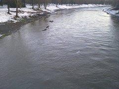 Stezka pro pěší v Komenského sadech, včetně mola, zatopená minulý týden vodou.