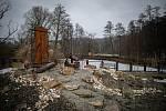 Zoo Ostrava je nadále dle nařízení vlády uzavřená, 6. února 2021 v Ostravě. Mangusta trpasličí.