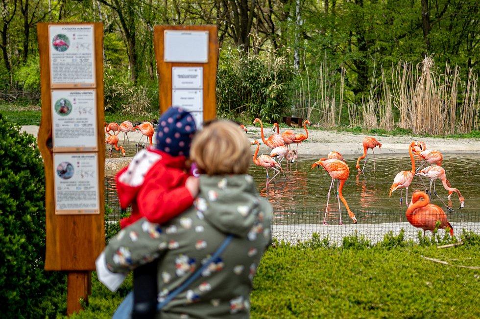 Zoologická zahrada Ostrava. 8. května 2021.