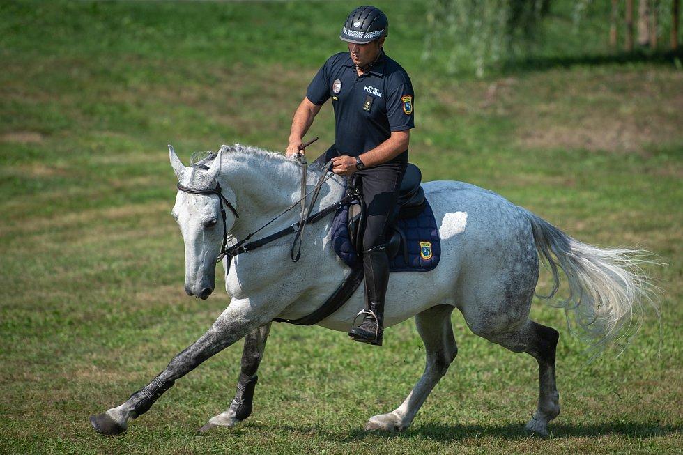 XXII. mezinárodní setkání jízdních policií v Ostravě.