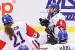 Mistrovství světa v para hokeji 2019, 3. května 2019 v Ostravě. Na snímku (zleva) Kvoch Tomas (CZE), Geier Michal (CZE).