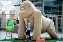 Safari v Avionu. Výstava nadživotních soch zvířat vyrobených z recyklovaného kartonu, 15. února 2020 v Ostravě.