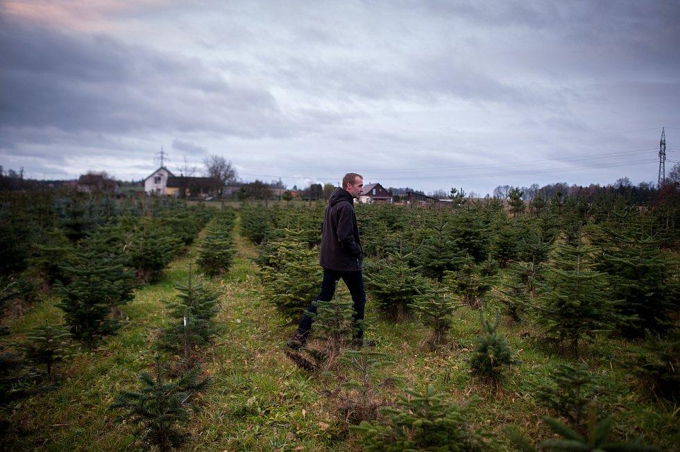 Rodinná plantáž vánočních stromků se nachází na okraji města Vratimova, v části výstižného názvu Zadky, ulice Na Zadkách.