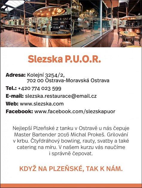 Slezská PUOR, Kolejní 3254/2, Ostrava