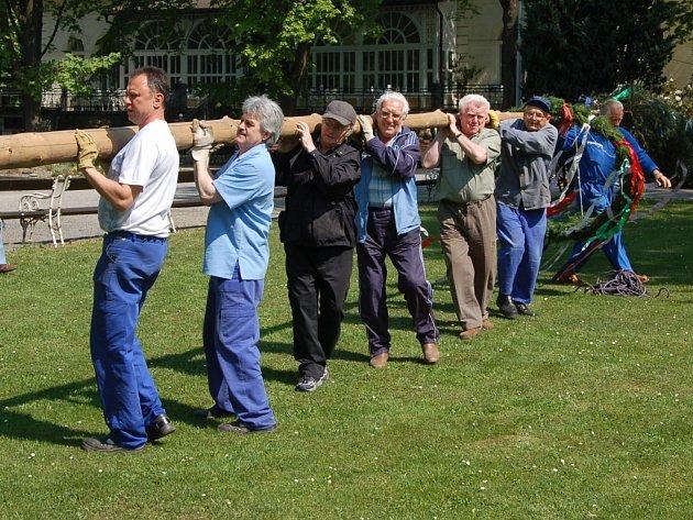 V Karviné-Darkově ve čtvrtek dobrovolníci z přípravného výboru folklorního festivalu Máj nad Olzou stavěli májku. Festival začíná v pátek odpoledne.