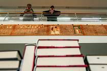 Ojedinělou výstavu Aniho papyru, který je krásnou ukázkou takzvané Egyptské knihy mrtvých, můžete v těchto dnech zhlédnout v ostravském Domě knihy Knihcentrum.