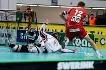 Radim Cepek v utkání mezi Českem a Švédskem na světovém šampionátu v Ostravě