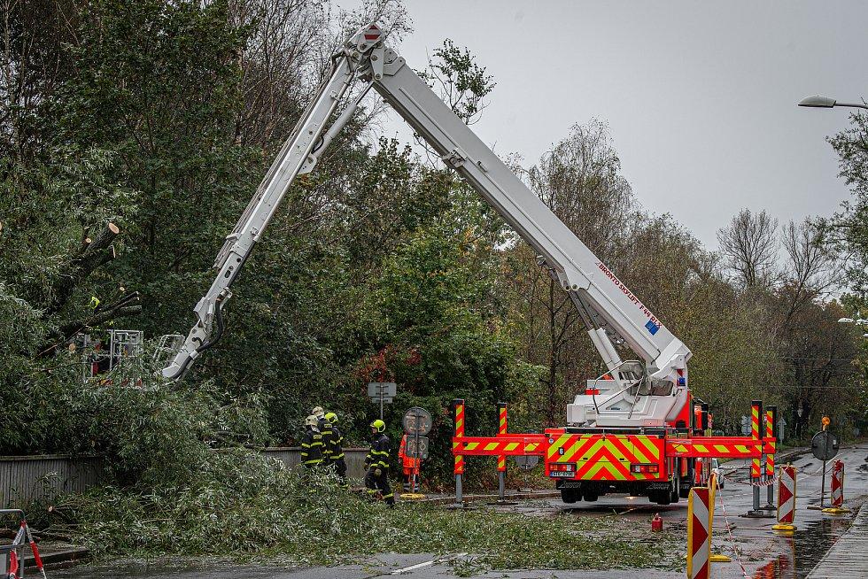 Noční deště zvedly hladiny řek na severní Moravě, 14. října 2020. Hasiči odstraňují spadlý strom poblíž řeky Lučiny.