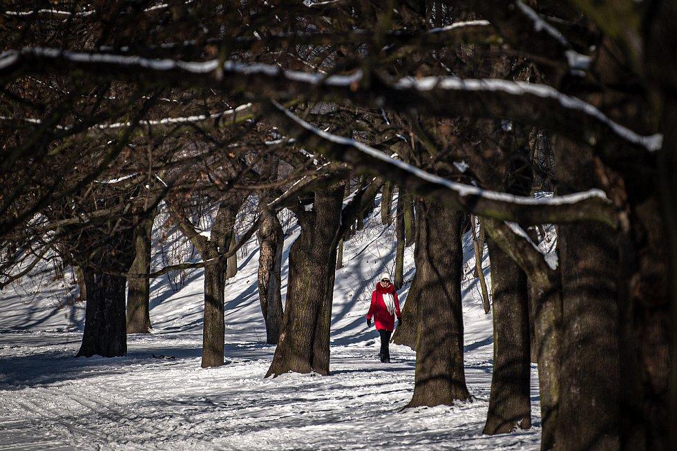 Mrazivá zima v centru Ostravy, 15. února 2021.