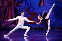 Snímek z baletního představení Labutí jezero v podání souboru Moscow City Ballet.