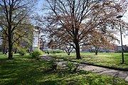 Snímek k článku Mariánské náměstí, centrum někdejší Čertovy Lhotky, čeká velká proměna.