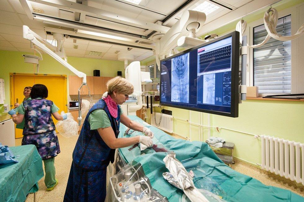 Operační zákrok ve Vaskulárním centru Vítkovické nemocnice.