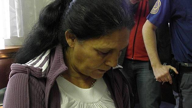 Mária Gáborová v pondělí před soudem prohlásila, že si kvůli opilosti téměř na nic nepamatuje.