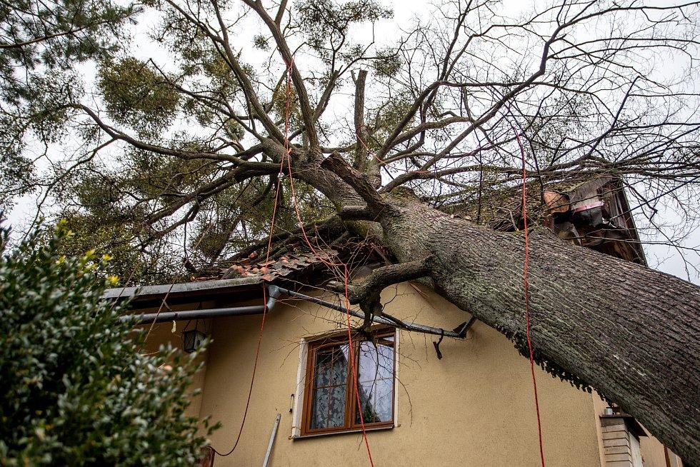 Odstraňování následků silného větru v Moravskoslezském kraji po vichřici Sabine. Ilustrační foto.